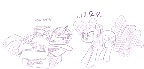 box,pone,MLP,Cats