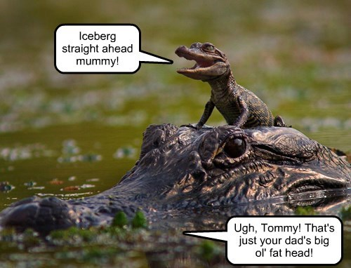 alligator captions funny - 8553410048