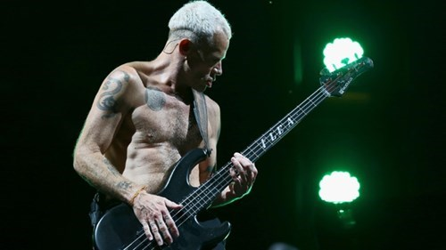 The Red Hot Chili Peppers' Flea has started keeping bees.