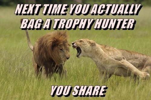 share,bag,trophy hunter,lion,caption