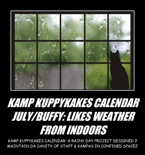 KAMP KUPPYKAKES CALENDAR JULY/BUFFY: LIKES WEATHER FROM INDOORS