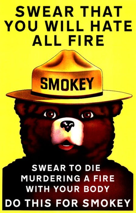 funny memes smokey the bear swear that you will hate all fire