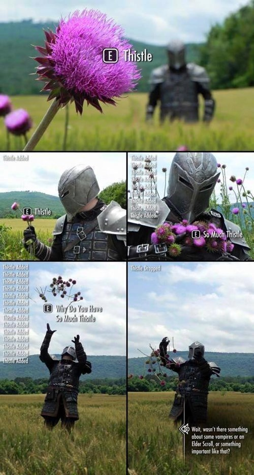 video-games-who-cares-too-busy-picking-flowers