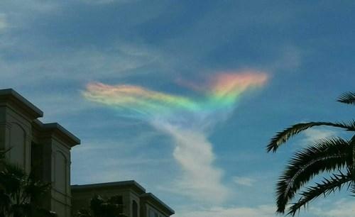 fire rainbow fire rainbow - 8554484736