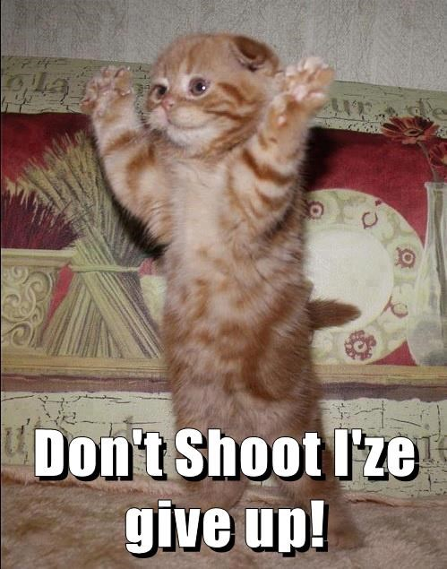 Don't Shoot I'ze give up!