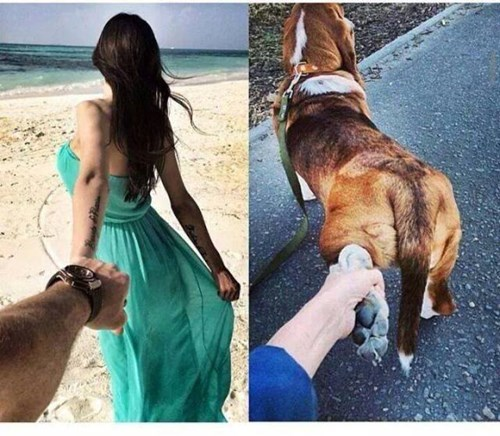 dating-fails-mans-best-friend-with-benefits