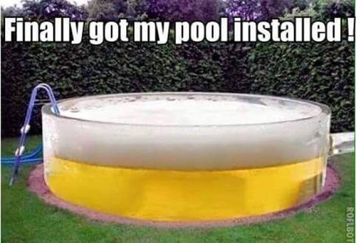 party-fails-dive-in