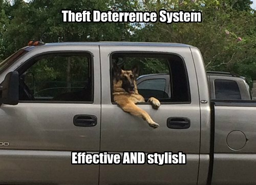 dogs system caption anti theft - 8555246336