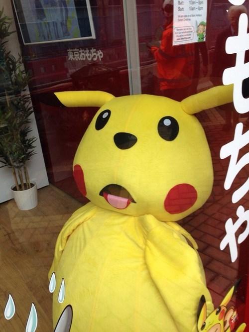 pokemon memes wtf pikachu
