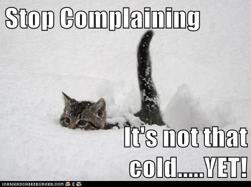 Stop Complaining  It's not that cold.....YET!