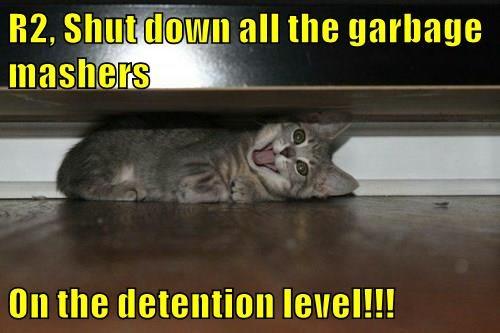 lolcats,r2d2,shut down,garbage,kitten,funny