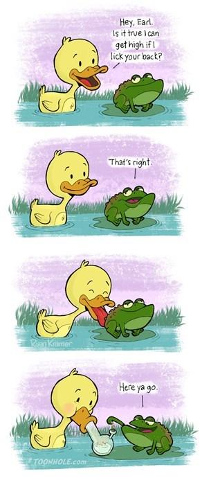 party-fails-ducks-love-420