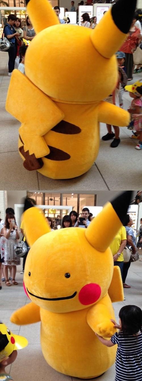 pokemon memes ditto pikachu
