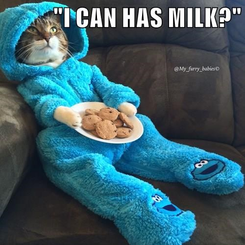 """""""I CAN HAS MILK?"""""""