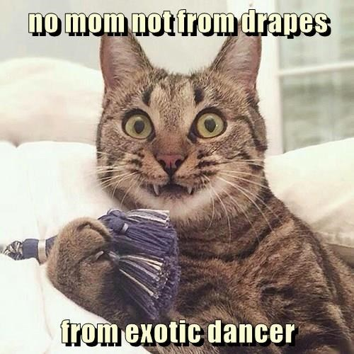 no mom not from drapes  from exotic dancer