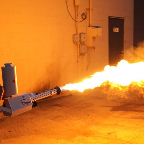 A Detroit lawmaker wants to ban personal flamethrowers.