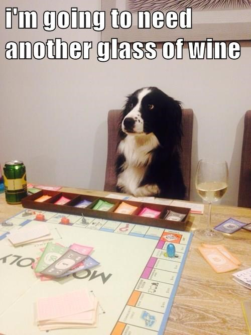 animals dogs monopoly wine caption funny - 8556744448
