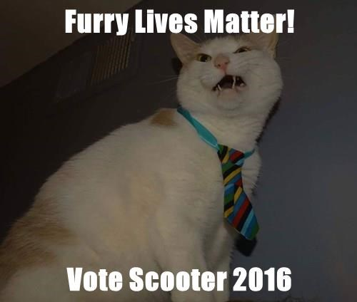 Furry Lives Matter!  Vote Scooter 2016