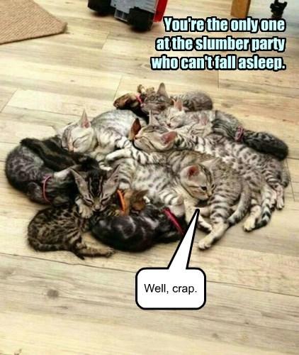 Awkward kittenhood moment
