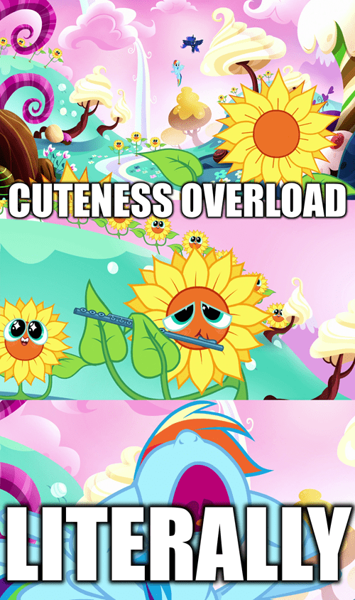 overload nightmare too cute rainbow dash - 8557436928