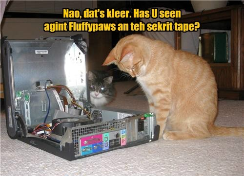 Nao, dat's kleer. Has U seen agint Fluffypaws an teh sekrit tape?