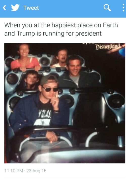 funny memes roller coaster donald trump