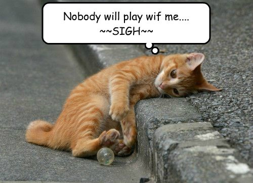 Nobody will play wif me.... ~~SIGH~~