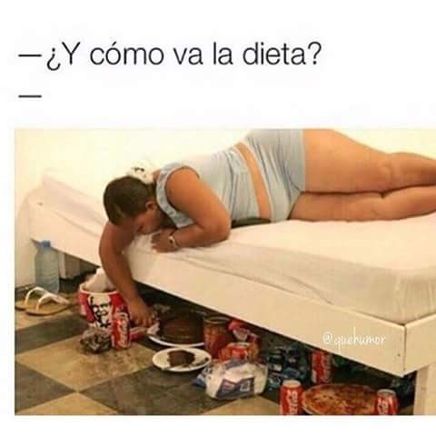 como va la dieta