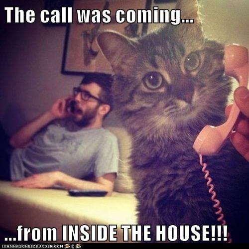 The call was coming...  ...from INSIDE THE HOUSE!!!