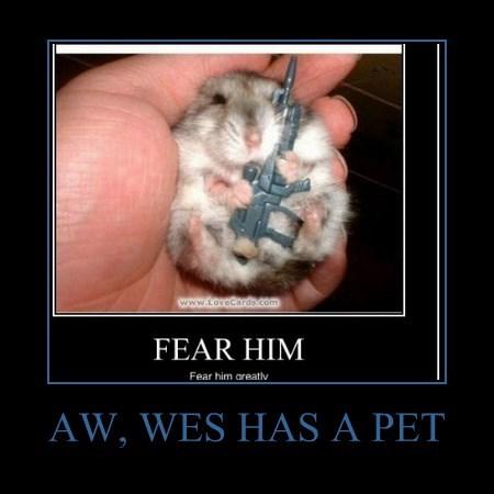AW, WES HAS A PET