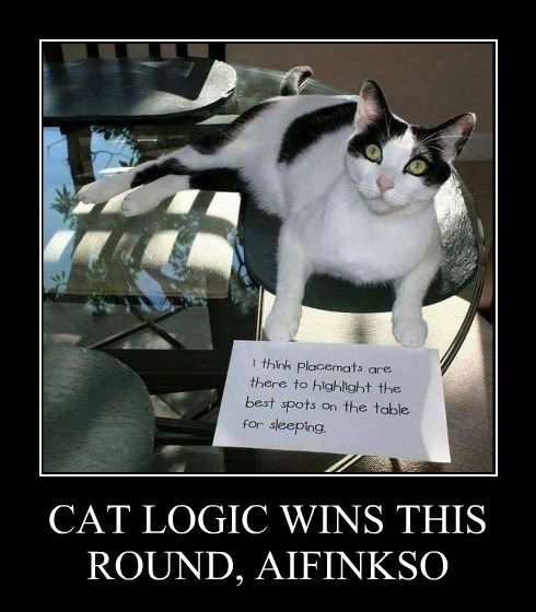 CAT LOGIC WINS THIS ROUND, AIFINKSO