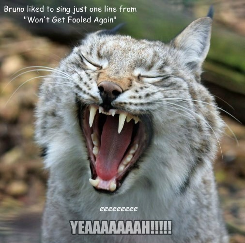 """Bruno liked to sing just one line from """"Won't Get Fooled Again"""""""