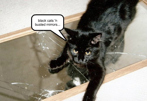 black cats 'n busted mirrors...