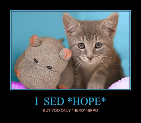 I  SED *HOPE*