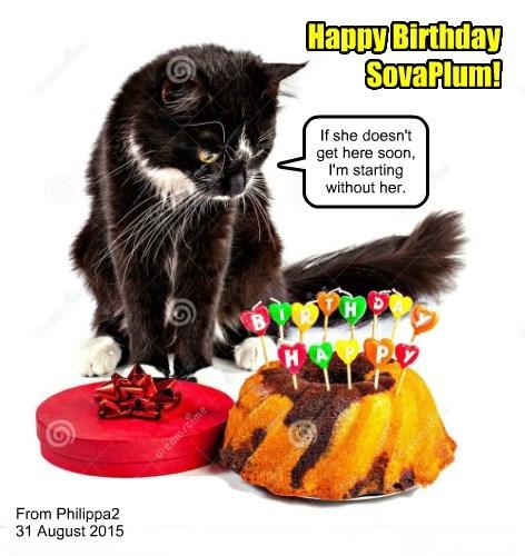 Happy Birthday SovaPlum!