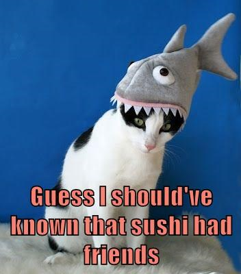 animals captions Cats funny - 8559283712