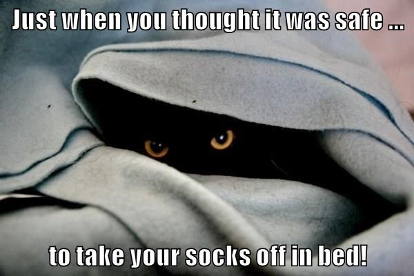 Just when you thought it was safe ...  to take your socks off in bed!