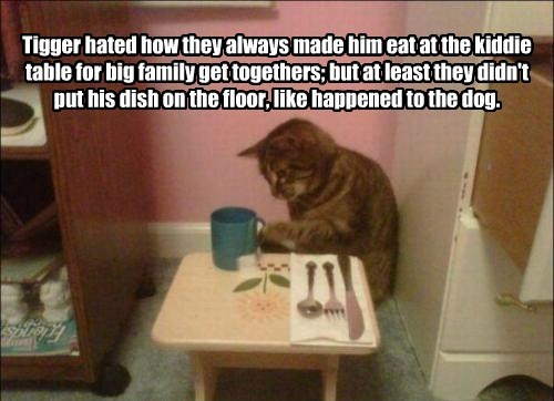 Tigger hated how they always made him eat at the kiddie table for big family get togethers; but at least they didn't put his dish on the floor, like happened to the dog.