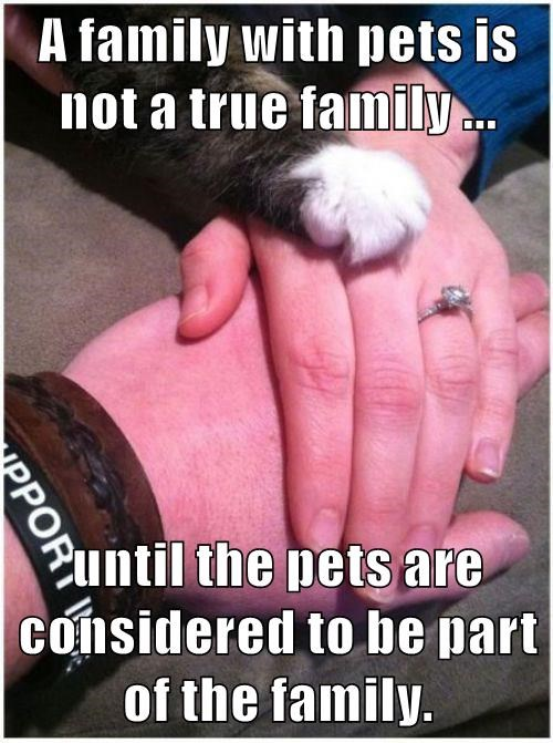 A family with pets is not a true family ...  until the pets are considered to be part of the family.