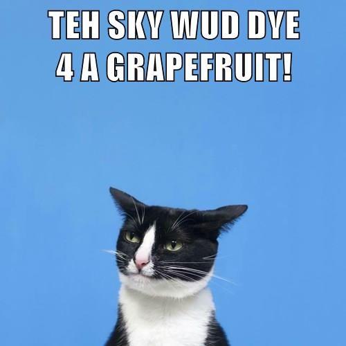 TEH SKY WUD DYE                              4 A GRAPEFRUIT!