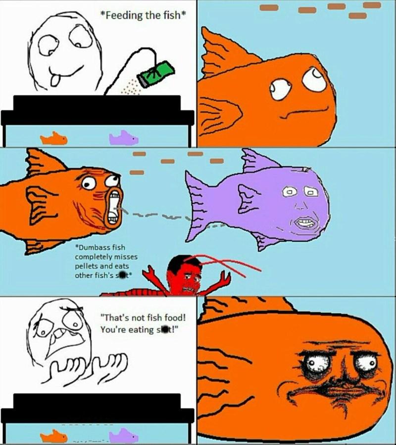 poop food fish - 8559623168