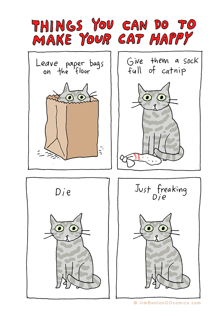 funny-web-comics-things-you-can-do-to-make-your-cat-happy
