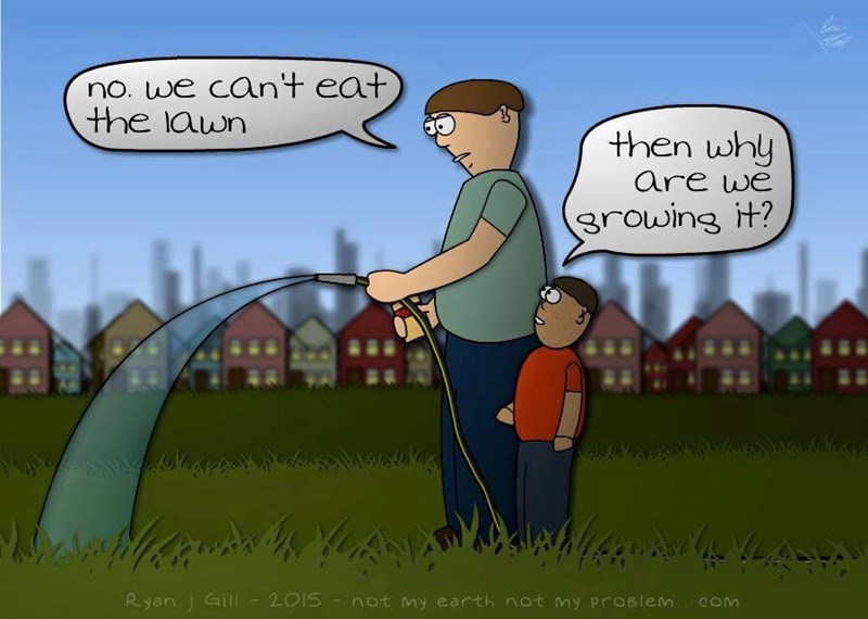 funny-web-comics-because-of-goddamn-insecurities-son