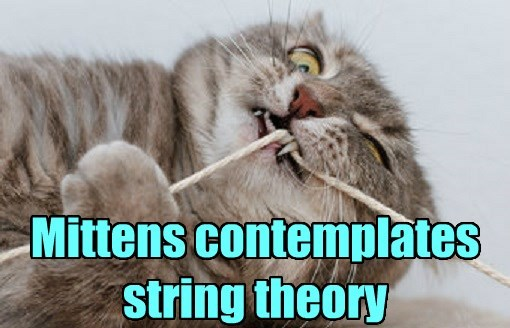 cat String Theory caption - 8559900928