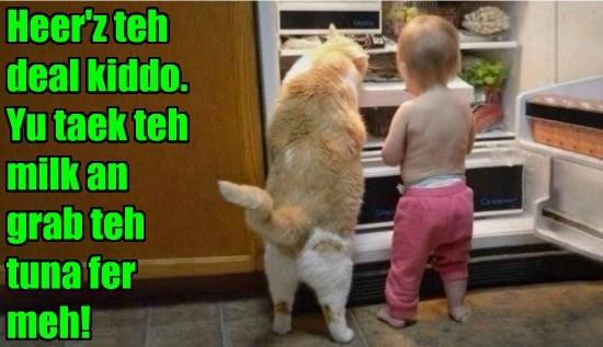 cat tuna toddler grab milk caption - 8559914752