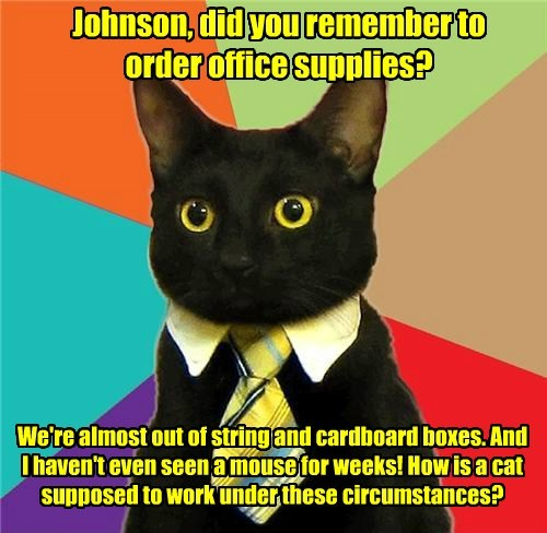 Johnson, did you remember to  order office supplies?
