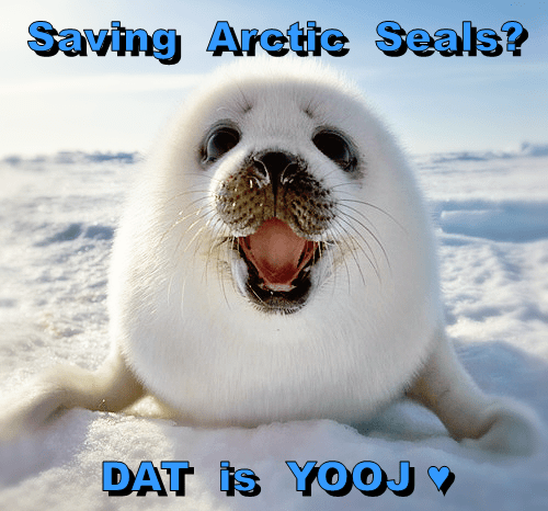 Saving  Arctic  Seals?  DAT  is  YOOJ ♥