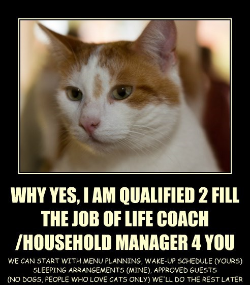 WHY YES, I AM QUALIFIED 2 FILL THE JOB OF LIFE COACH /HOUSEHOLD MANAGER 4 YOU