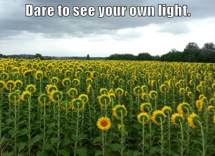 Dare to see your own light.