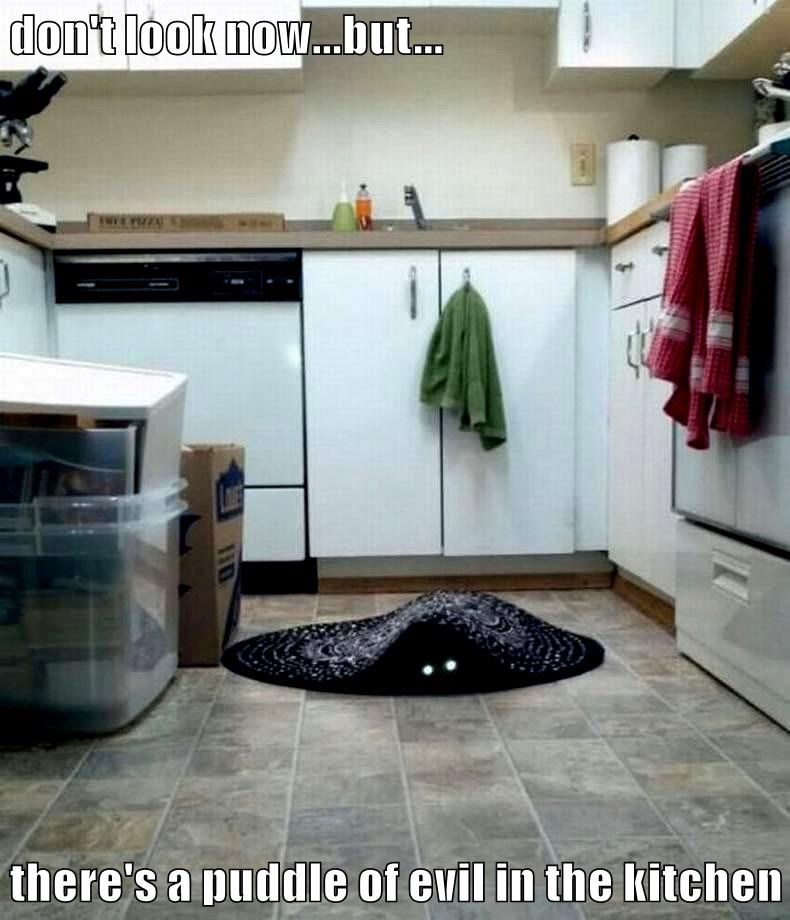 don't look now...but...  there's a puddle of evil in the kitchen